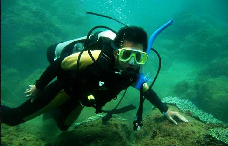 壁纸 动物 海底 海底世界 海洋馆 水族馆 鱼 鱼类 750_480