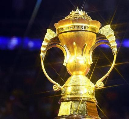 2017国际羽毛球赛事