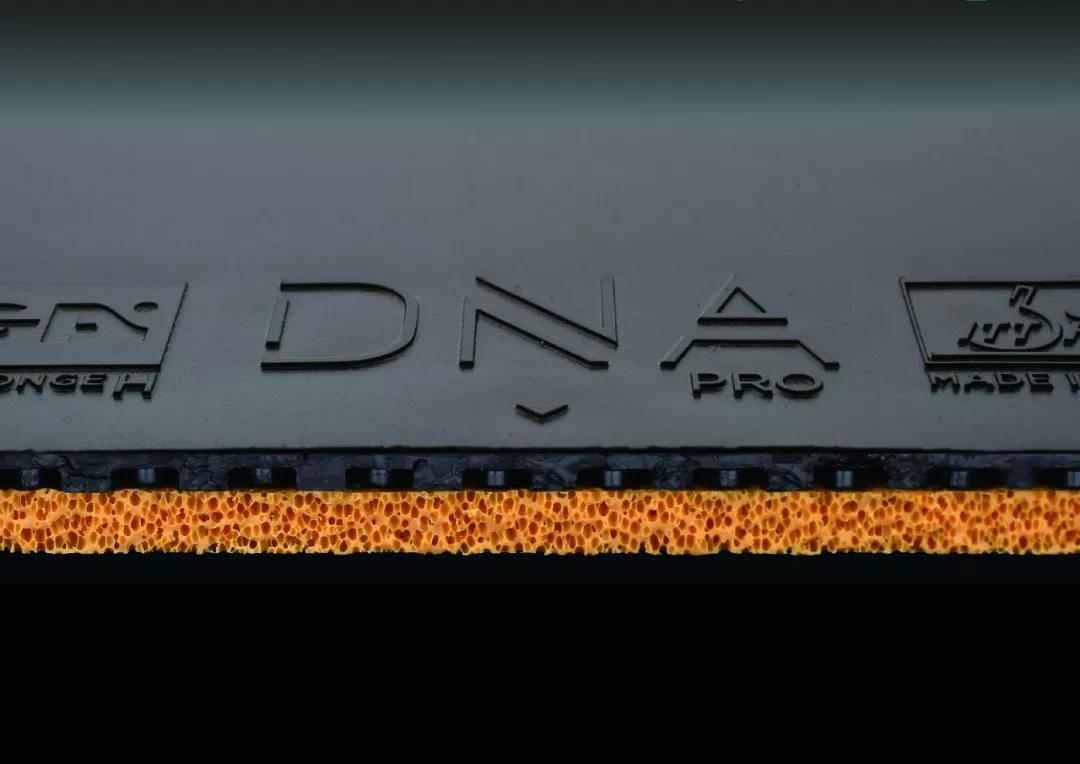 斯帝卡DNA套胶