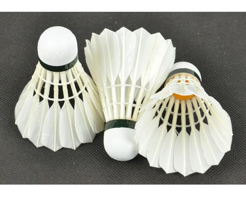 凯胜KASON KS40羽毛球(超高性价比羽毛球)